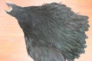 Metz Grade 1 Hen Cape Dyed Black