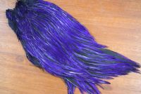 Lathkill Dyed Indian Badger Salmon Cock Capes Purple