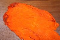 Lathkill Dyed Large Salmon Hen Cape Hot Orange