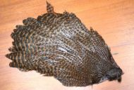 Hareline Hen Grizzly Dyed Brown