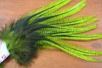 Spirit River UV2 Perdigon Coq De Leon Flo Chartreuse