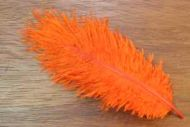 Salmon Turbo Plumes Hot Orange
