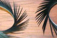 Goose Biots Black