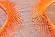 Goose Biots Orange