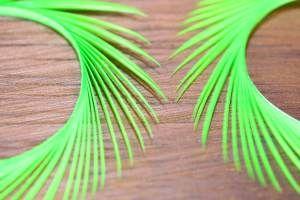 Goose Biots Chartreuse