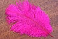 Salmon Turbo Plumes Hot Fuchsia
