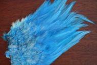 Strung Cock Saddle Hackles Kingfisher Blue