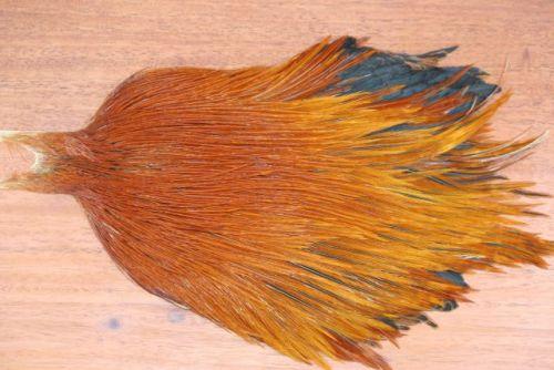 Metz Grade 3 Cock Cape Brown