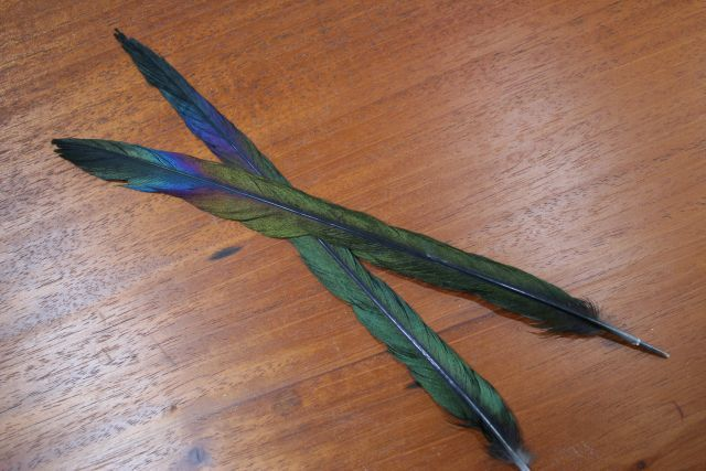 Lathkill Magpie Tail Feathers