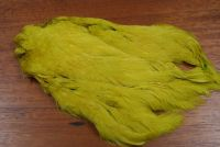 Lathkill Dyed Indian Broiler Hen Cape Golden Olive