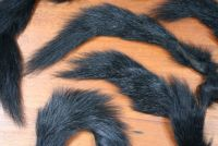 Grey Squirrel Tail Dyed Black