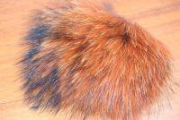 Raccoon Dog Fiery Brown