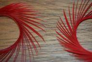 Goose Biots Red