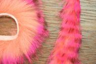 Hot Pink Brown Barred Over Shrimp Pink