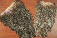 Indian Hen Saddle Mottled Grey