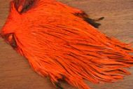 Lathkill Dyed Indian Badger Salmon Cock Capes Hot Orange