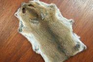 Mouse Skin Natural.