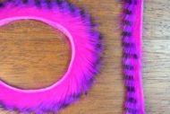 Tiger Barred Rabbit Strips Black Barred Purple/Fuchsia
